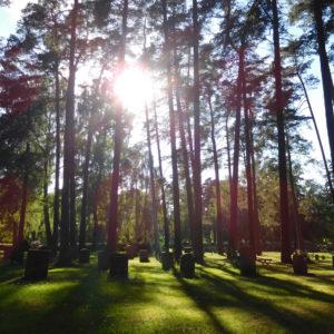 Skogskyrkogård…