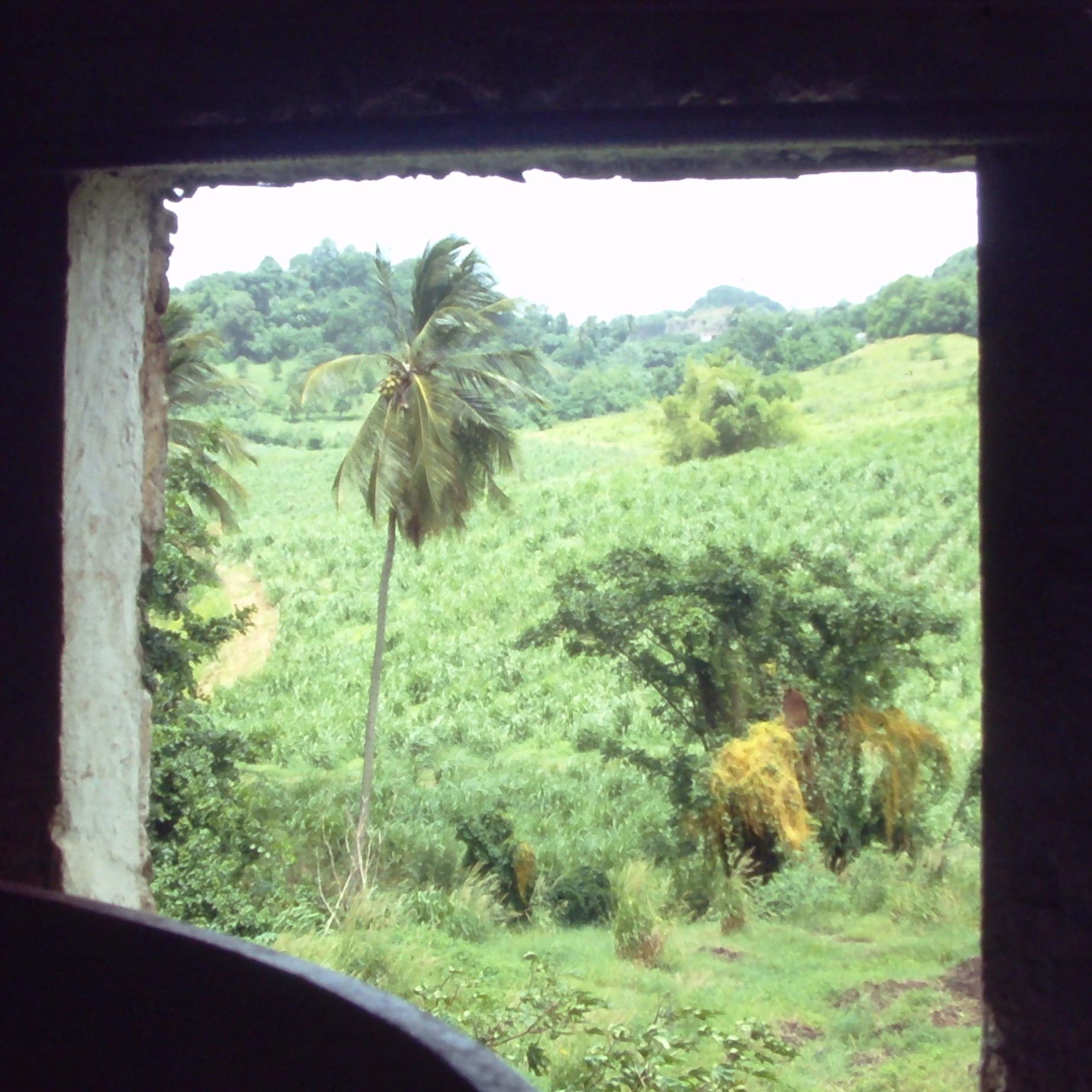 Martinique 2